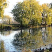 Озеро в парке Вильгов,примыкает к трассе Луцк-Ковель., Голобы
