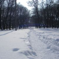 В парку, Горохов