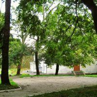 In city parks, Горохов