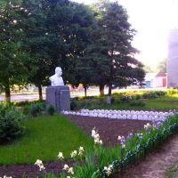 "Пам""ятник   І.Франкові  в  1-й  школі - Gorokhiv,  Ivan  Franko  monument, Горохов"