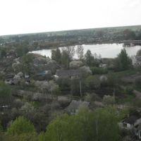 Озеро Чорне, Заболотье