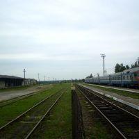 Пуці станцыі Забалацце, Заболотье