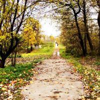 Алея в парк, Камень-Каширский