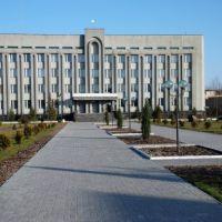 Районна рада, Камень-Каширский