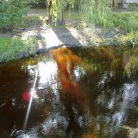 Зеркалом блестит река. 28.06.2012, Камень-Каширский
