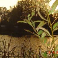 Озеро, Киверцы