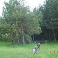 Велопрогулянка, Киверцы