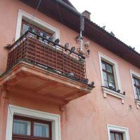 Голуби на балконі, Ковель