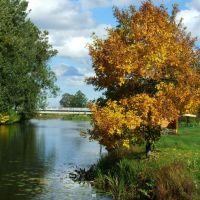 осінній парк/ autumn park, Ковель