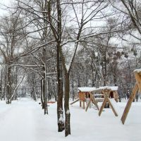 Перший сніг у міському парку_First snow in the city park, Ковель