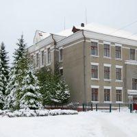Ковельська міська гімназія_Kovel City Gymnasium, Ковель