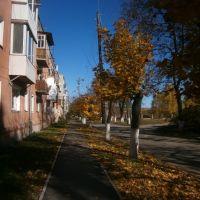 Autumn street, Ковель