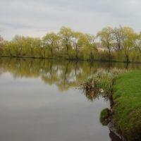 пруд в п.Локачи. Украина., Локачи