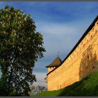 Замок Любарта. Луцьк  Lubart's castle. Lutsk, Луцк