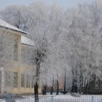 Школа, Любешов