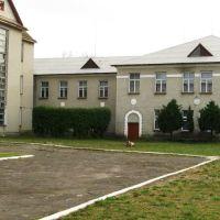Школа №1, Маневичи