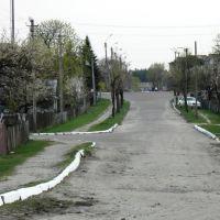 вул. Червоноармійська, Маневичи