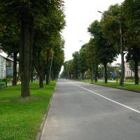 Бульвар Шевченка, Нововолынск