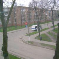 mayakovskiy, Нововолынск