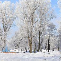 Міський парк / City Park, Нововолынск