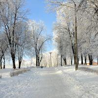 У міському парку / In the city park, Нововолынск
