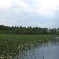 Озеро в с. Охітники, Турийск