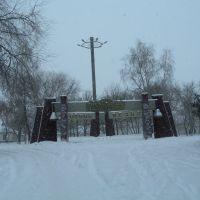 Памятный мемориал  (4 янв. 2009), Царичанка