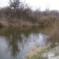Река Орель. Весна., Царичанка