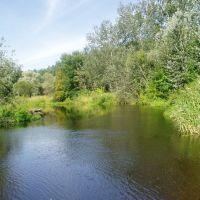Orel river near Tsarichanka, Царичанка