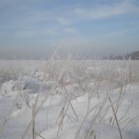 Зима в поле, Брагиновка