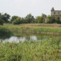 Река Бык, Брагиновка