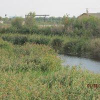 Река Бык вид с моста, Брагиновка