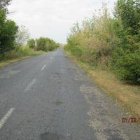 Дорога в Александрополь, Брагиновка