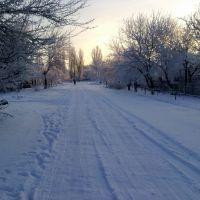 Снежная зима, Брагиновка