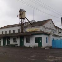 Мельница, Верховцево