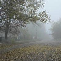 Улица Первомайская, Верховцево