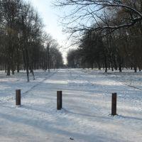 Вход в парк, Верховцево