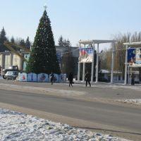 Елка перед входом в парк, Вольногорск