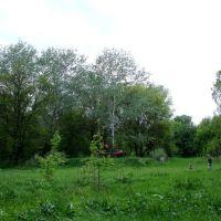 В центре парка, май 2009, Горняцкое