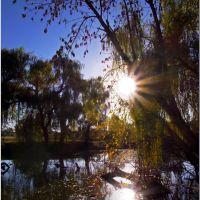 Старый парк в В.Тернах 21.10.2012, Горняцкое
