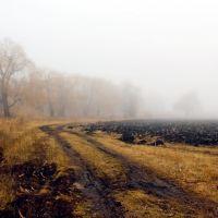 в туман, Горняцкое
