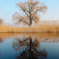 ...и отражение, Горняцкое