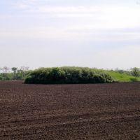 Древний курган, 2009, Горняцкое