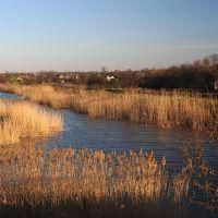река Кашлагач в Павловке, Демурино