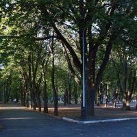 Начало осени, Днепропетровск