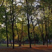 Autumn - Осень, Днепропетровск