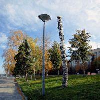 Из жизни фонарей и деревьев..., Днепропетровск
