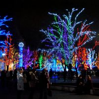 Днепропетровск.Парк.Рождество, Днепропетровск
