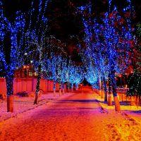 На полуночных аллеях..., Днепропетровск