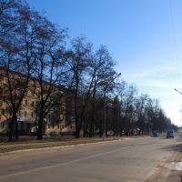 """Ул. Гагарина (вид в сторону магазина """"1001 мелочь""""), Желтые Воды"""